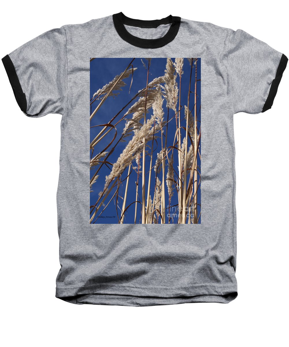 Photography Baseball T-Shirt featuring the photograph Line And Loop by Shelley Jones