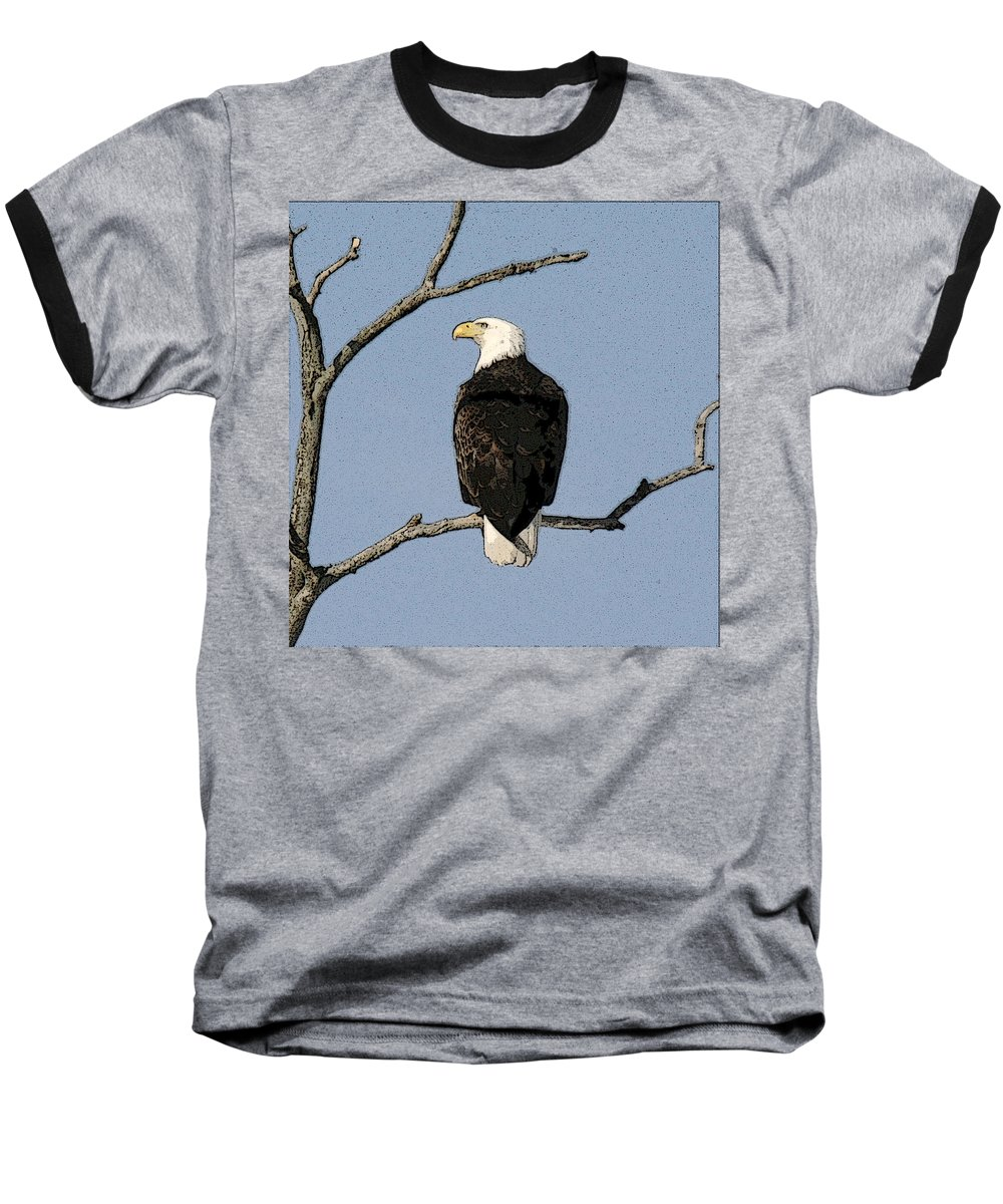 Eagle Baseball T-Shirt featuring the photograph Look Out by Robert Pearson