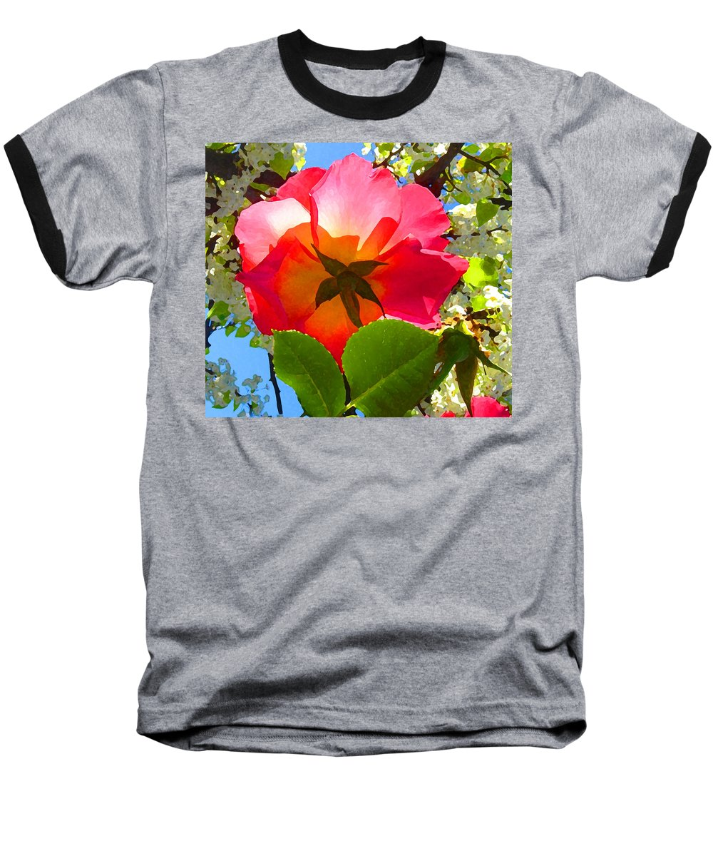 Roses Baseball T-Shirt featuring the photograph Looking Up At Rose And Tree by Amy Vangsgard