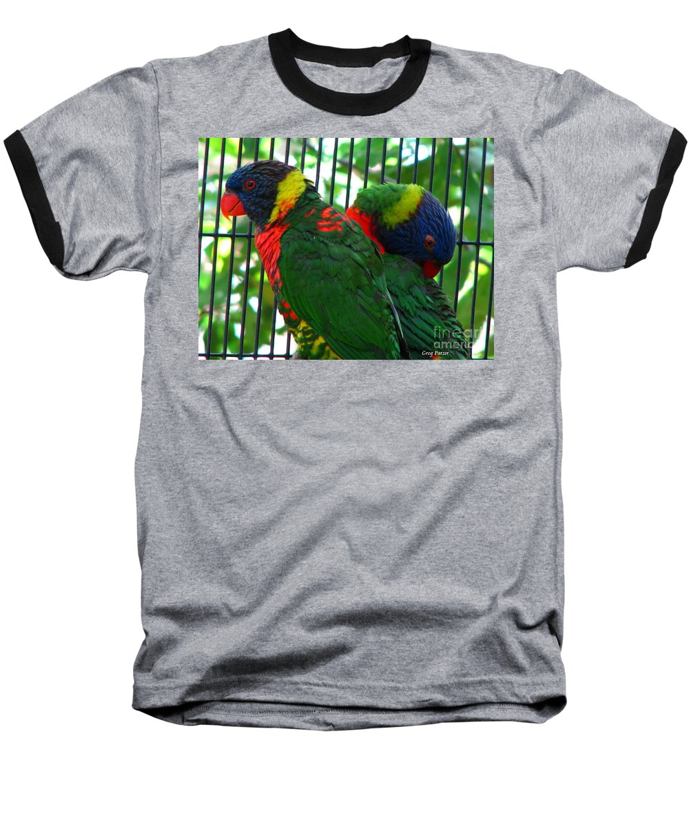 Patzer Baseball T-Shirt featuring the photograph Lory by Greg Patzer