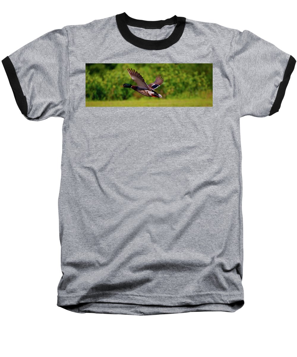 Baseball T-Shirt featuring the photograph Close Flyer by Tony Umana