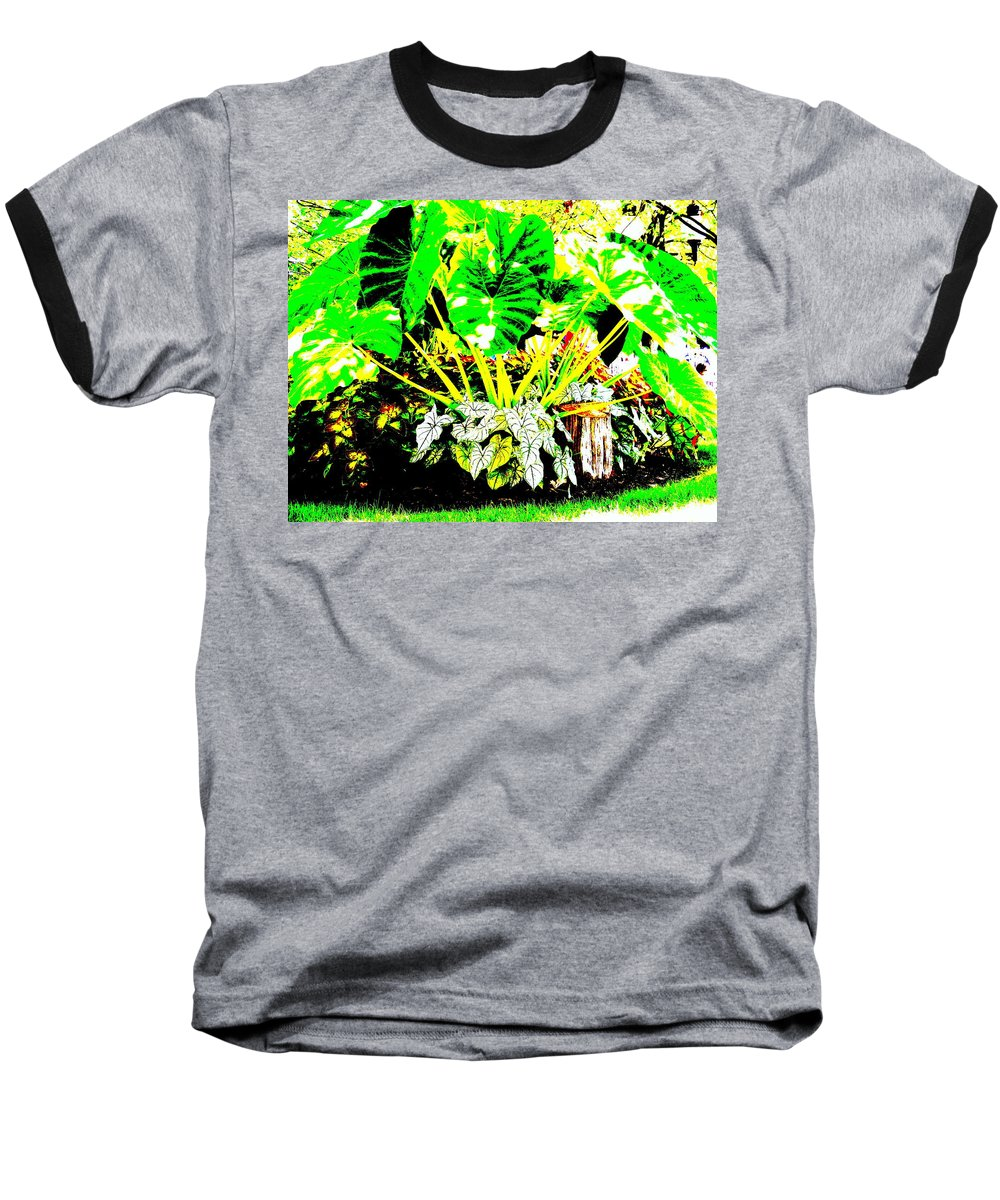 Plants Baseball T-Shirt featuring the photograph Lush Garden by Ed Smith
