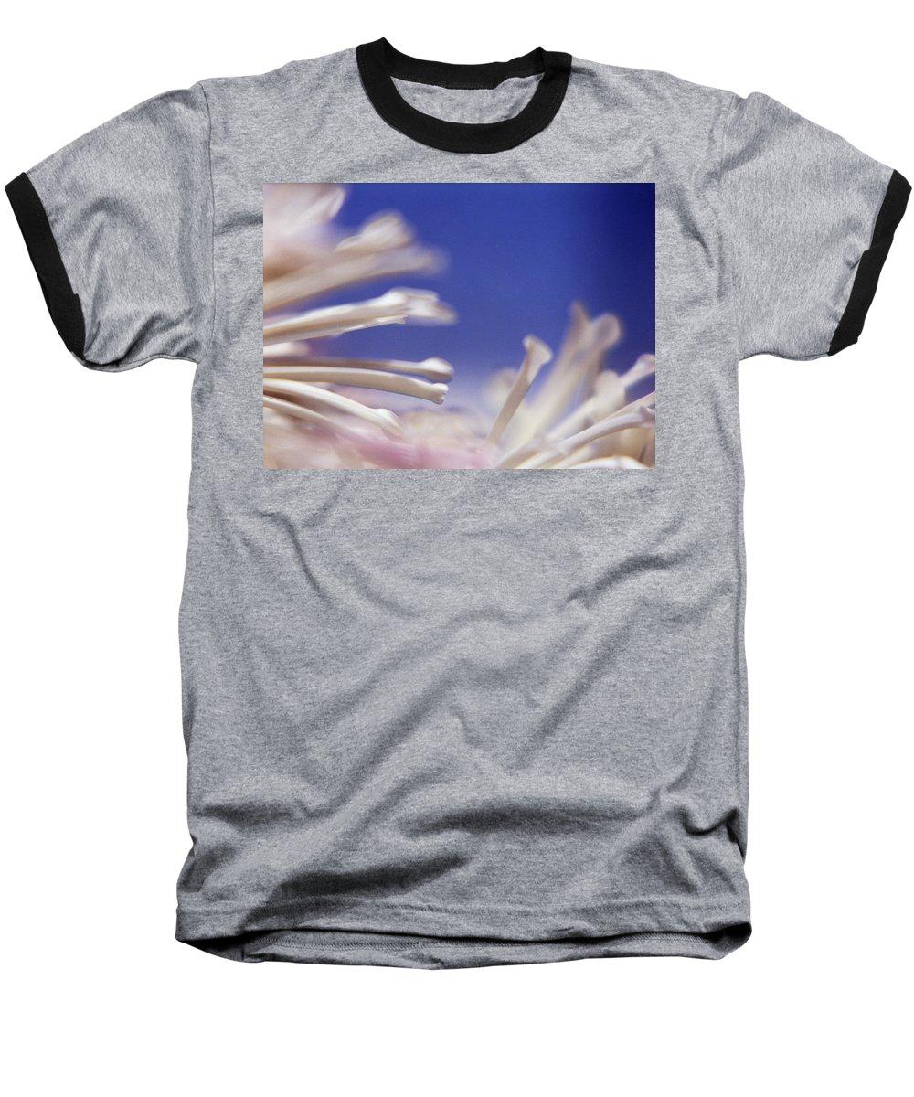 Macro Baseball T-Shirt featuring the photograph Macro Flower 2 by Lee Santa