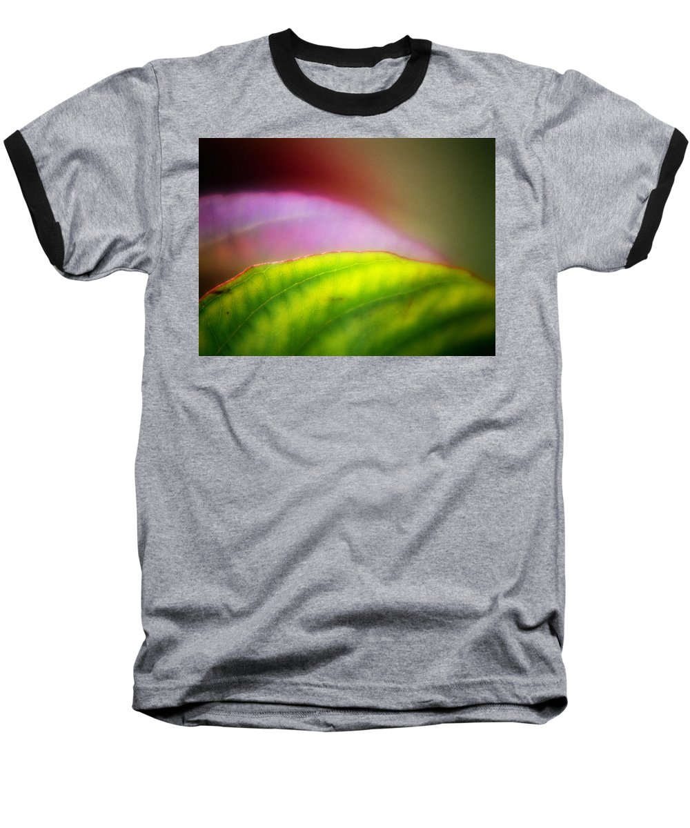 Macro Baseball T-Shirt featuring the photograph Macro Leaf by Lee Santa