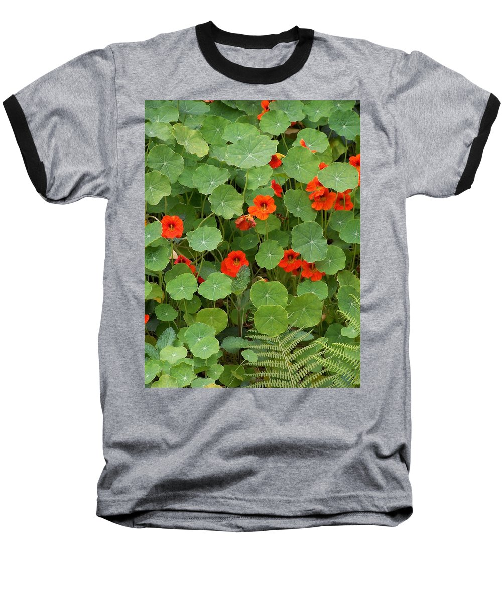Nasturtiums Baseball T-Shirt featuring the photograph Nasturtiums by Gale Cochran-Smith