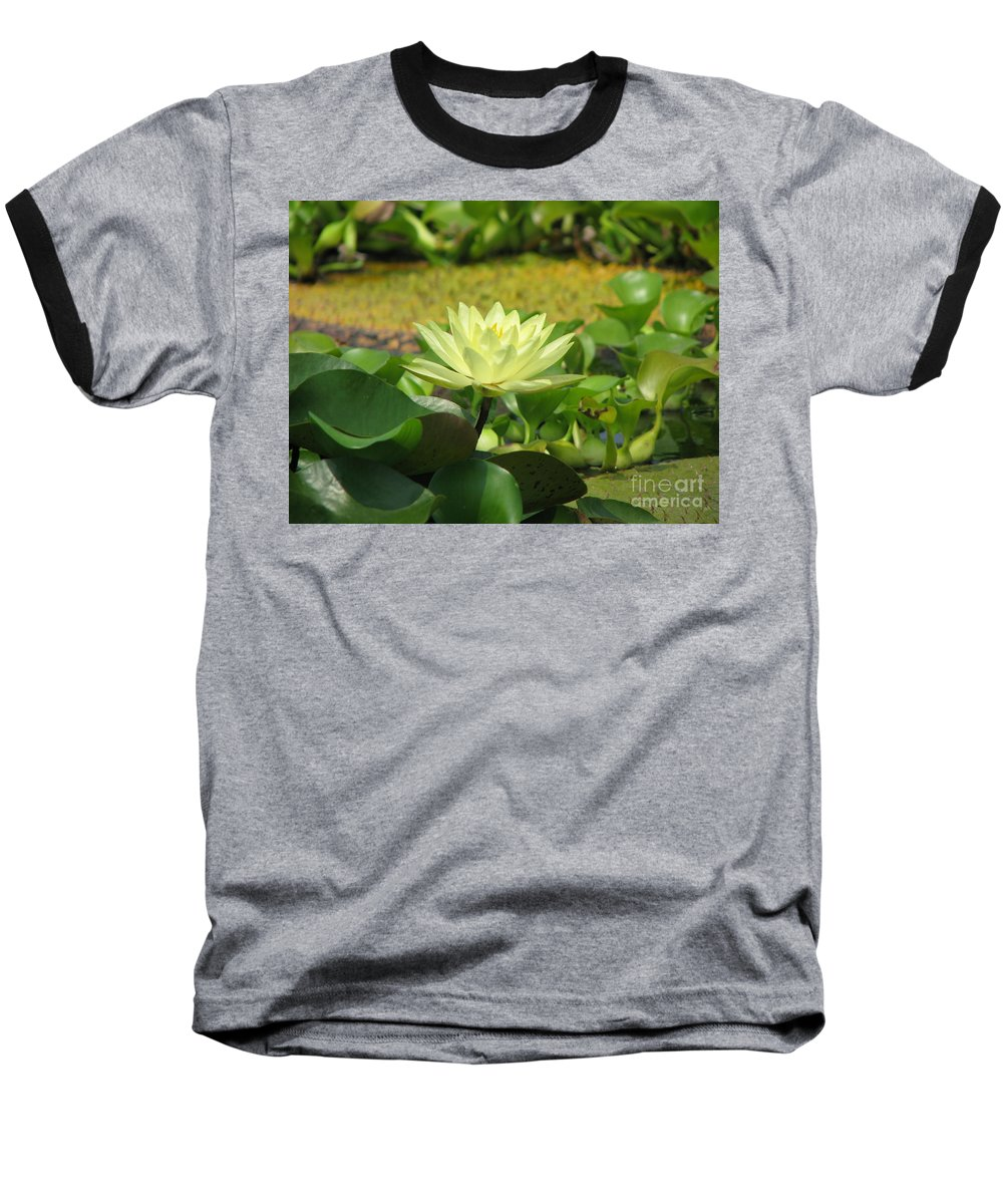 Nature Baseball T-Shirt featuring the photograph Nature by Amanda Barcon