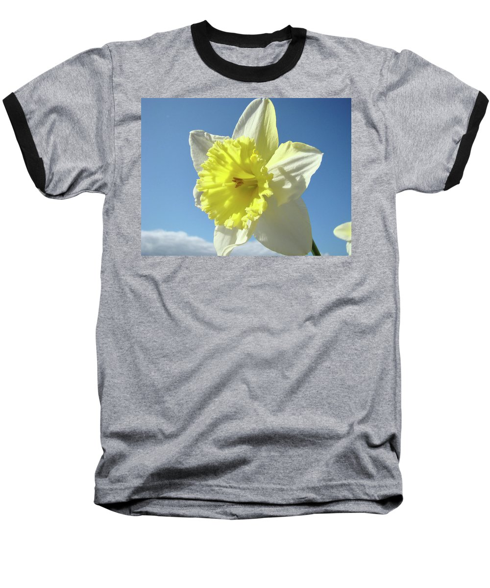 �daffodils Artwork� Baseball T-Shirt featuring the photograph Nature Daffodil Flowers Art Prints Spring Nature Art by Baslee Troutman