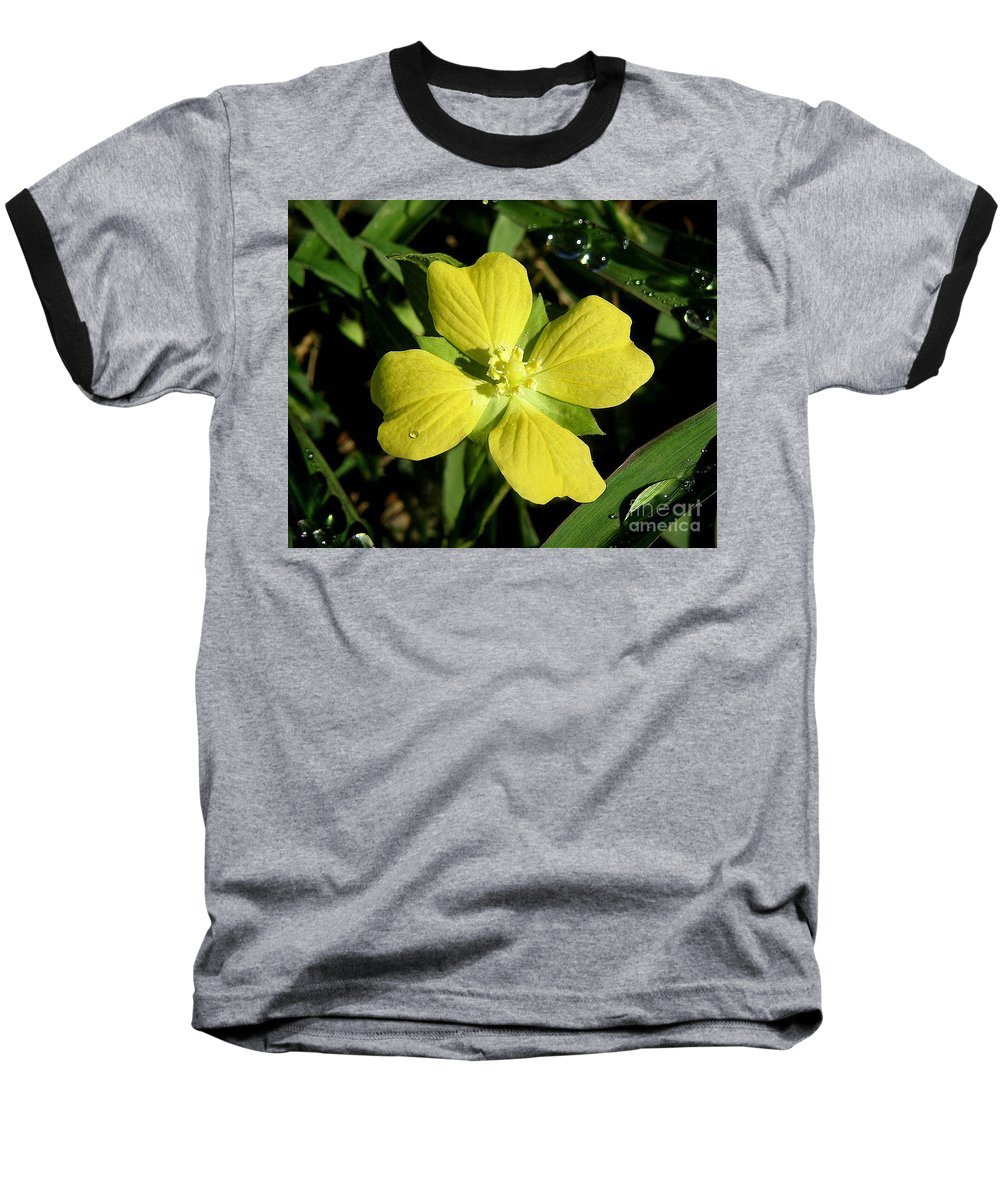 Nature Baseball T-Shirt featuring the photograph Nature In The Wild - Kissed By The Sun by Lucyna A M Green