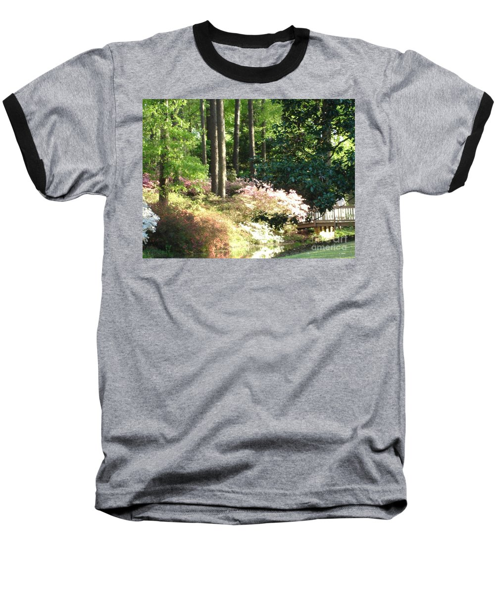 Photography Baseball T-Shirt featuring the photograph Nature by Shelley Jones