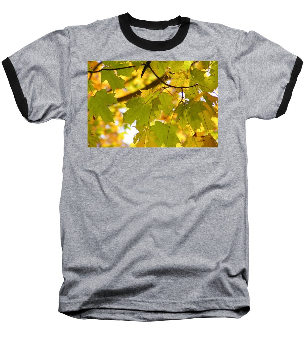 Leaves Baseball T-Shirt featuring the photograph Natures Glow by Ed Smith