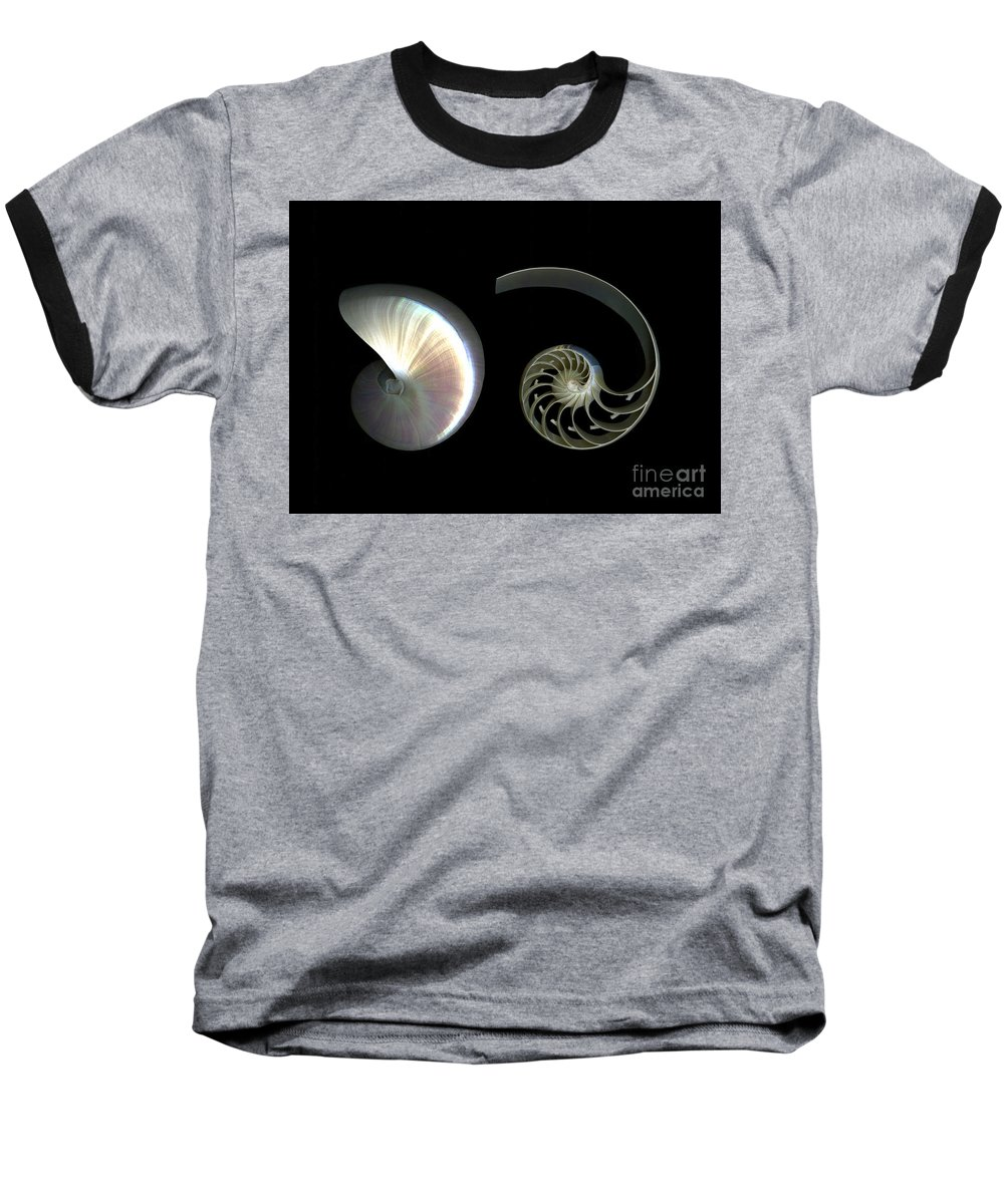 Nautilus Baseball T-Shirt featuring the photograph Nautilus Deconstructed by Christian Slanec