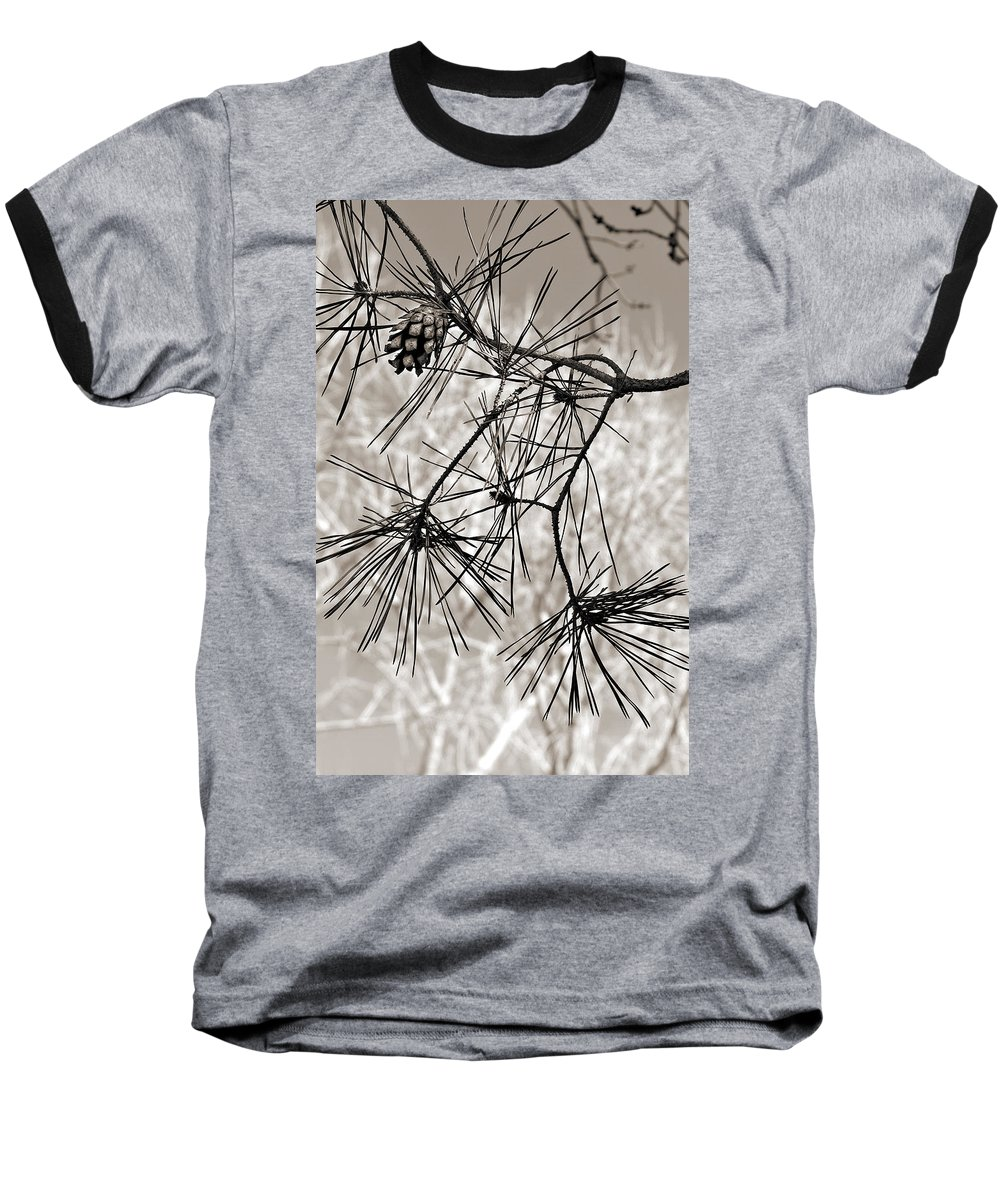 Tree Baseball T-Shirt featuring the photograph Needles Everywhere by Marilyn Hunt
