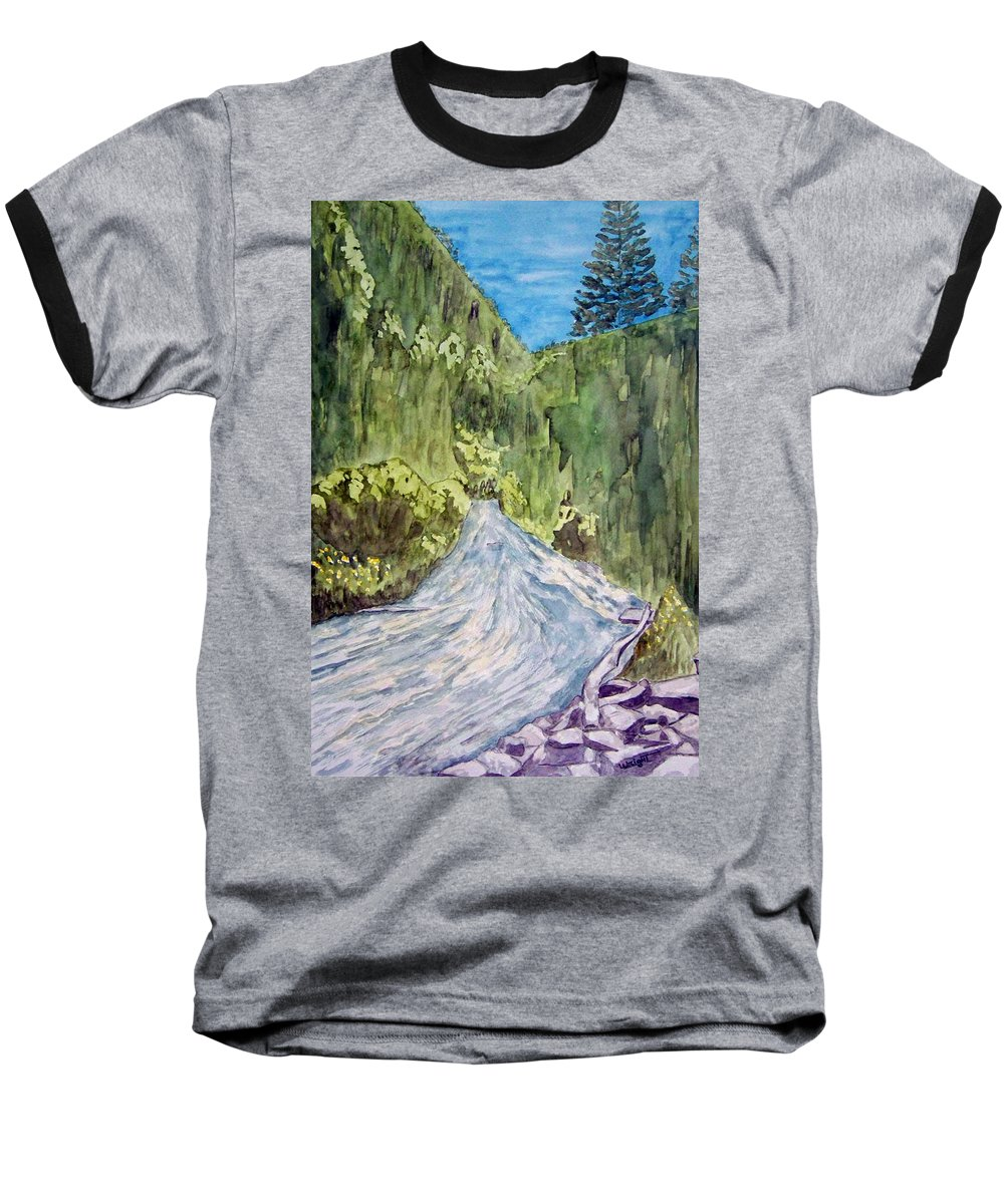 New Mexico Art Baseball T-Shirt featuring the painting New Mexico Canyon Impression by Larry Wright