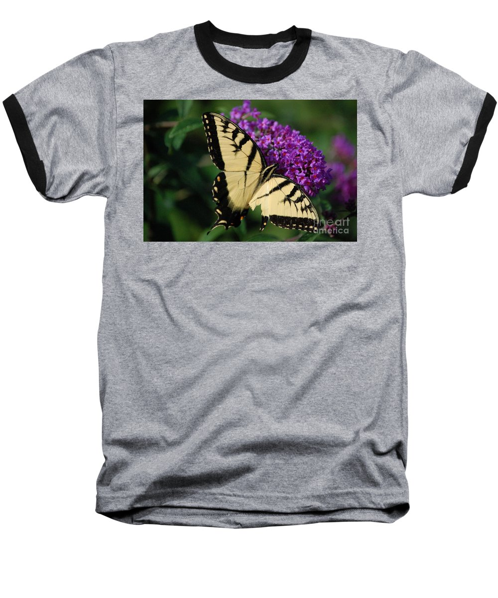 Butterfly Baseball T-Shirt featuring the photograph Nothing Is Perfect by Debbi Granruth