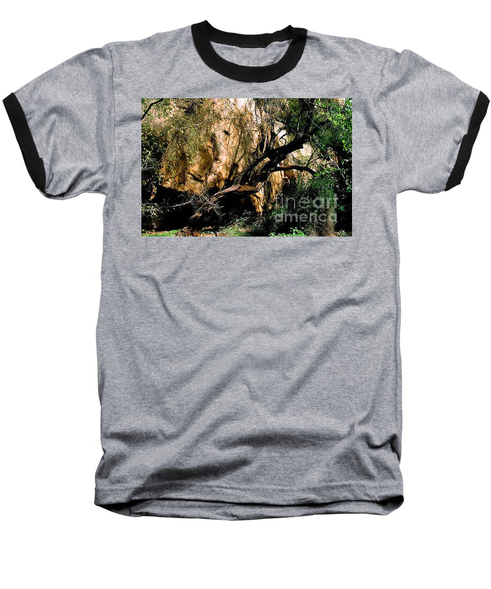 Trees Baseball T-Shirt featuring the photograph Old Tree by Kathy McClure