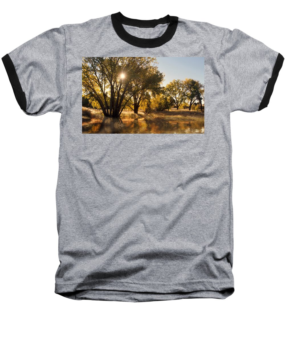 Ftrees Baseball T-Shirt featuring the photograph Oliver Sunbursts by Jerry McElroy