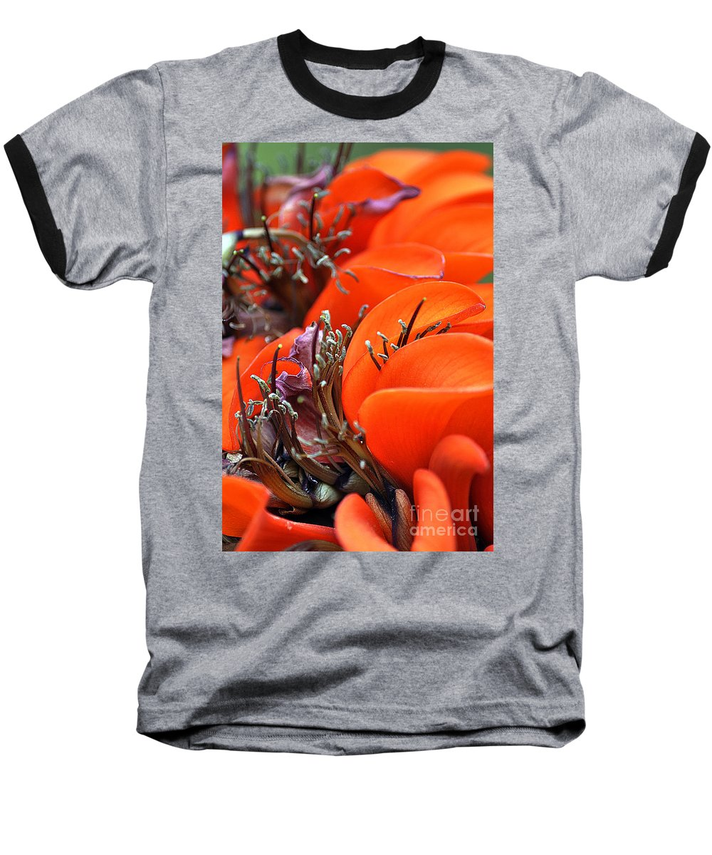 Clay Baseball T-Shirt featuring the photograph Orange by Clayton Bruster