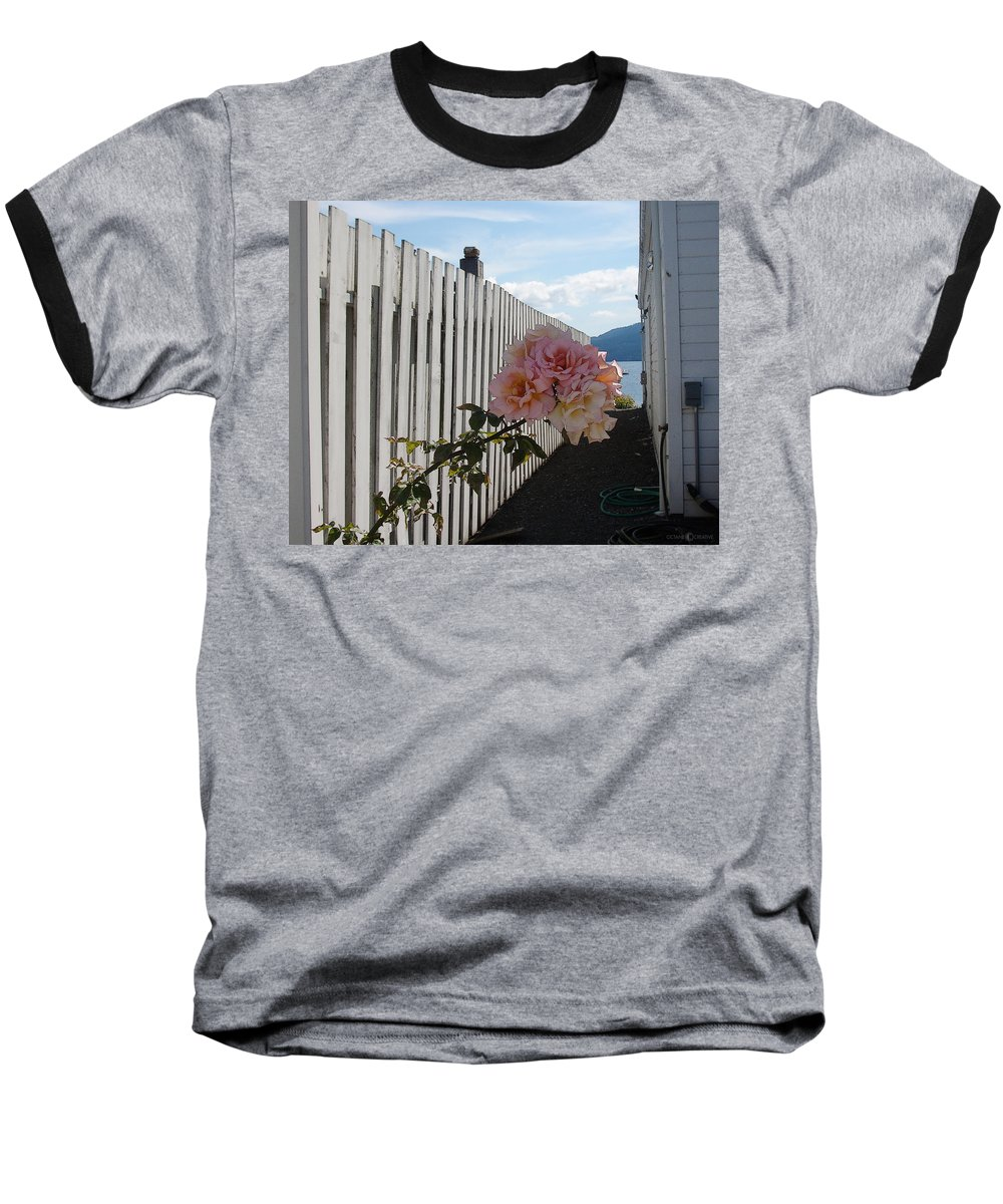 Rose Baseball T-Shirt featuring the photograph Orcas Island Rose by Tim Nyberg
