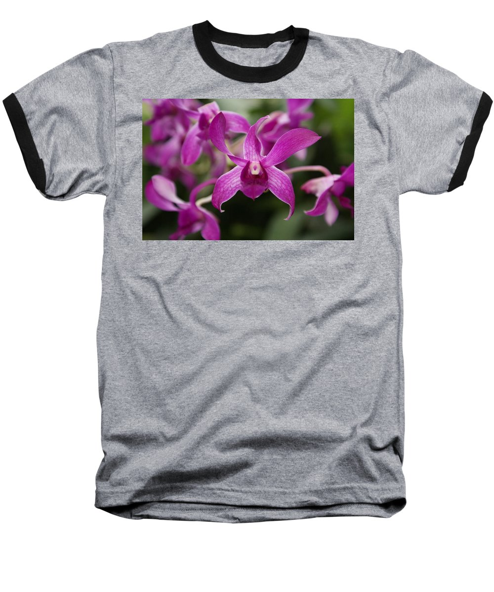 Orchid Baseball T-Shirt featuring the photograph Orchid by Heather Coen