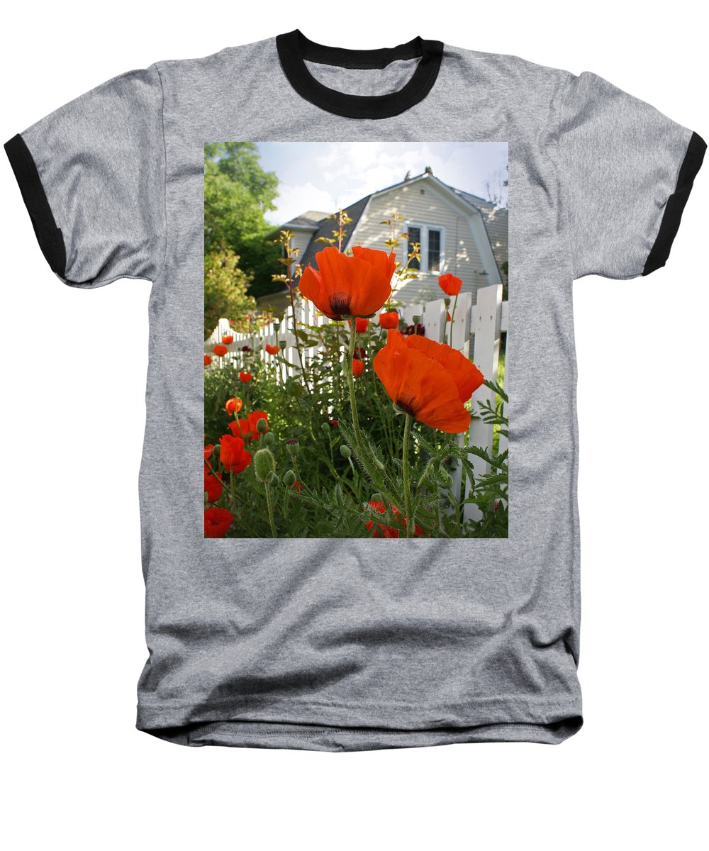 Poppies Baseball T-Shirt featuring the photograph Oriental Poppies by Heather Coen