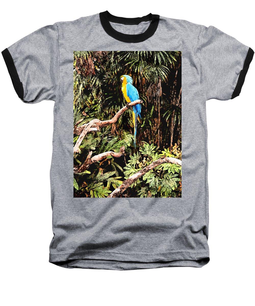 Parrot Baseball T-Shirt featuring the photograph Parrot by Steve Karol