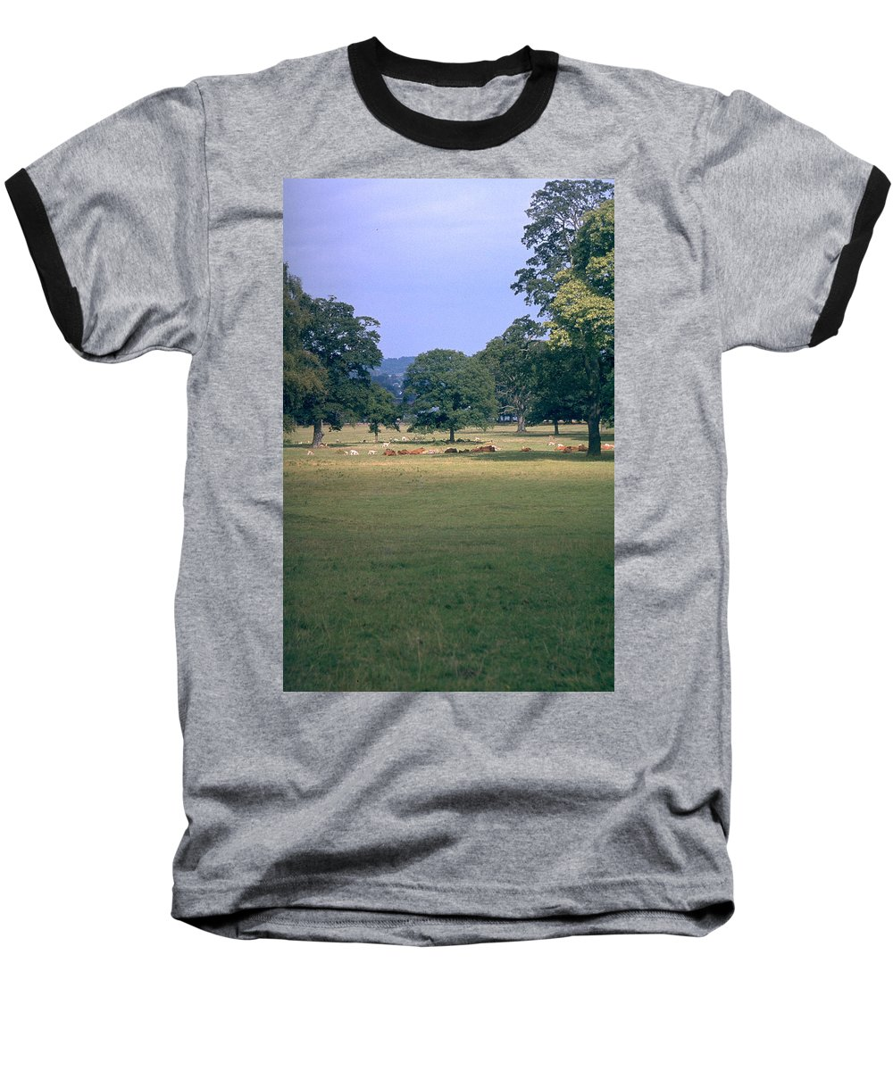 Great Britain Baseball T-Shirt featuring the photograph Pasture by Flavia Westerwelle