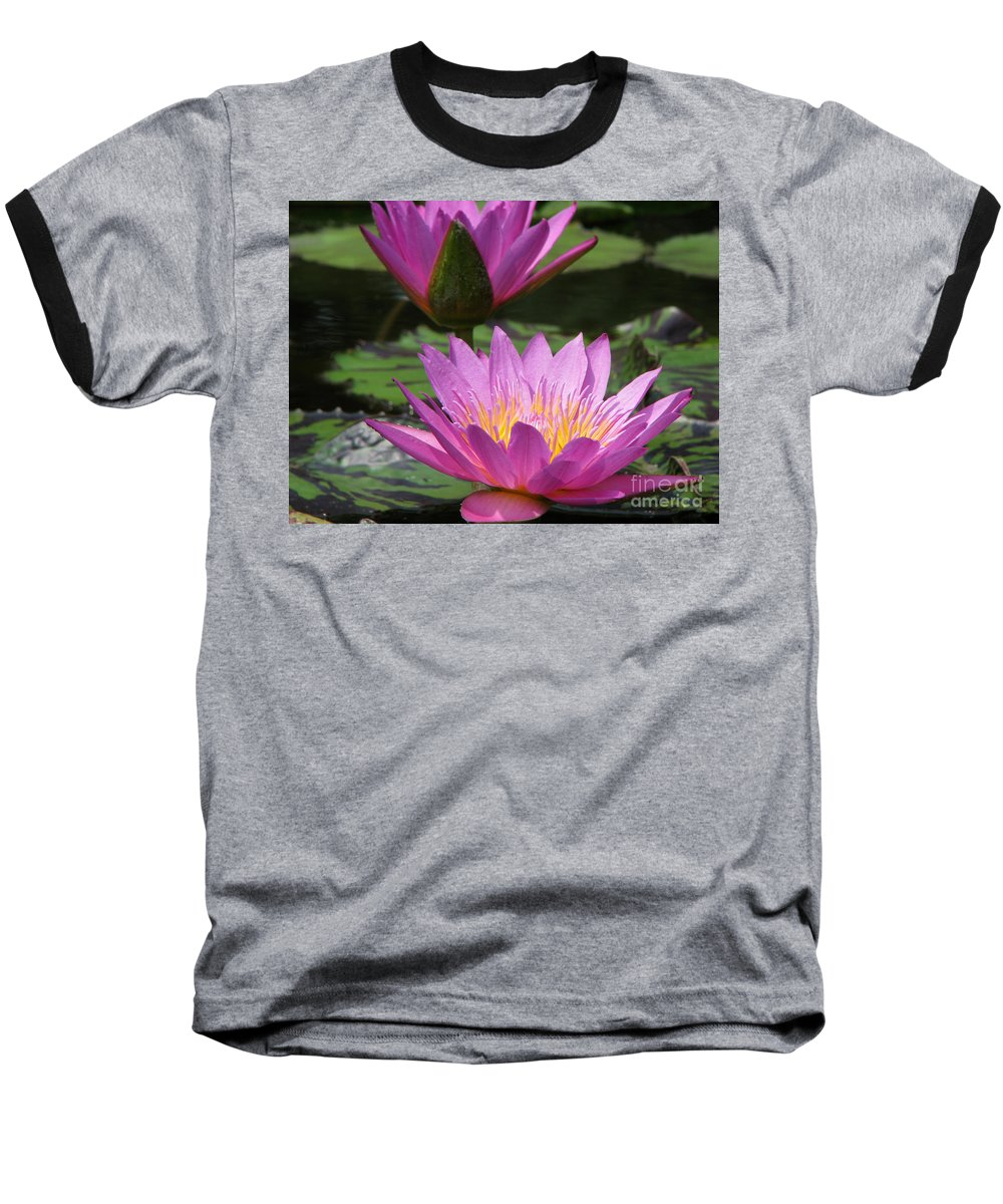 Lillypad Baseball T-Shirt featuring the photograph Peaceful by Amanda Barcon