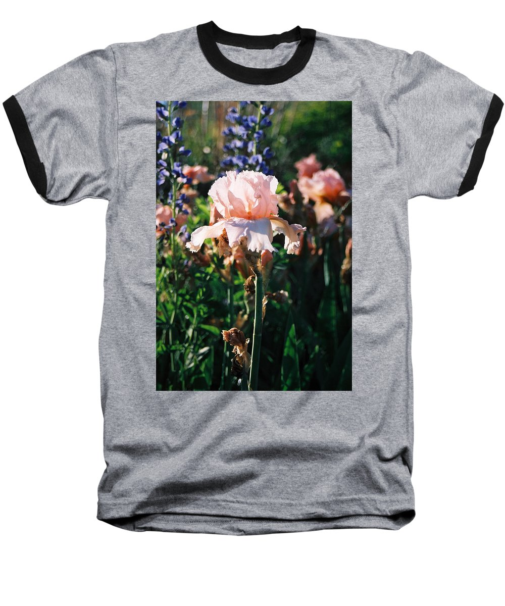 Flower Baseball T-Shirt featuring the photograph Peach Iris by Steve Karol