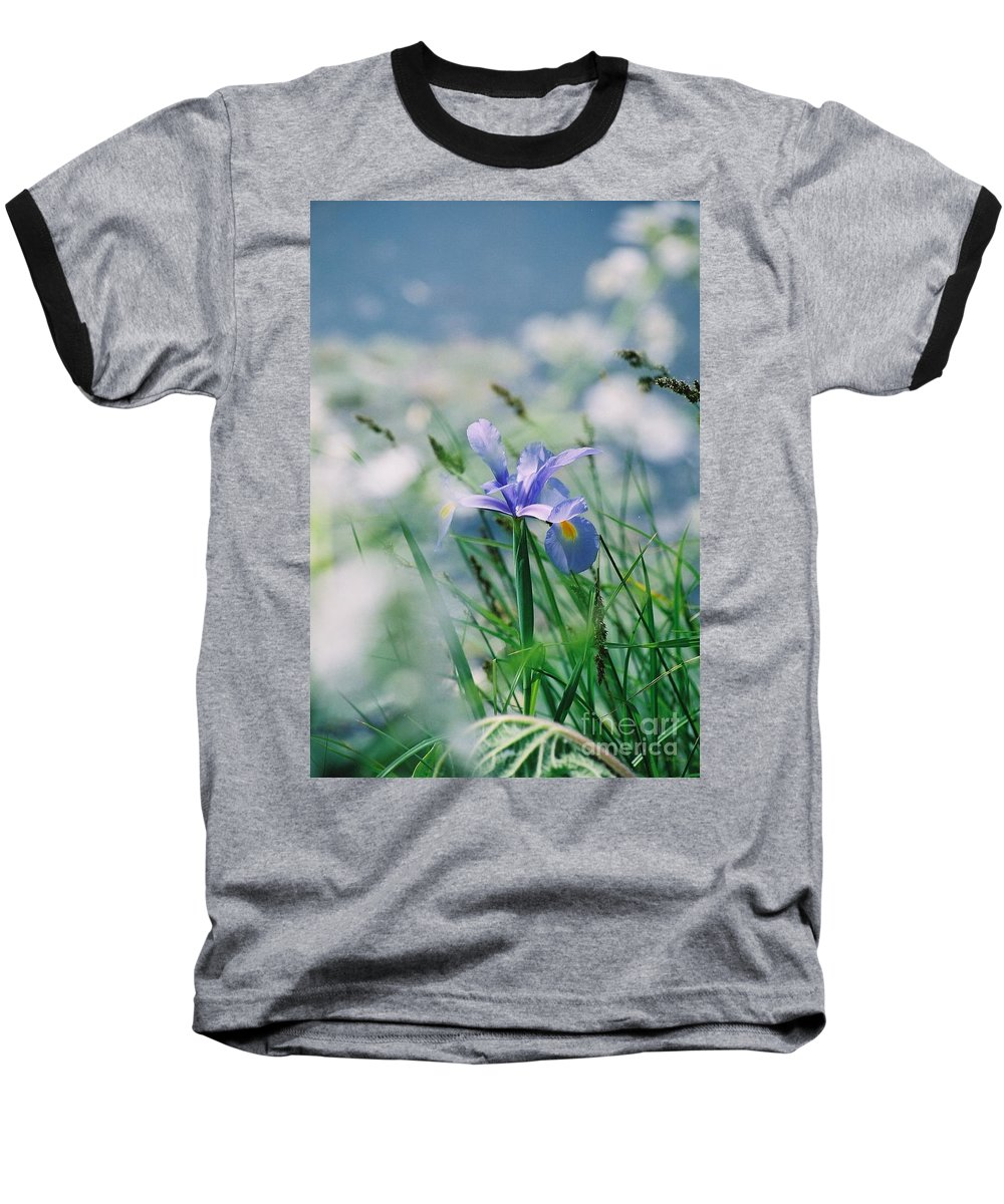 Periwinkle Baseball T-Shirt featuring the photograph Periwinkle Iris by Nadine Rippelmeyer
