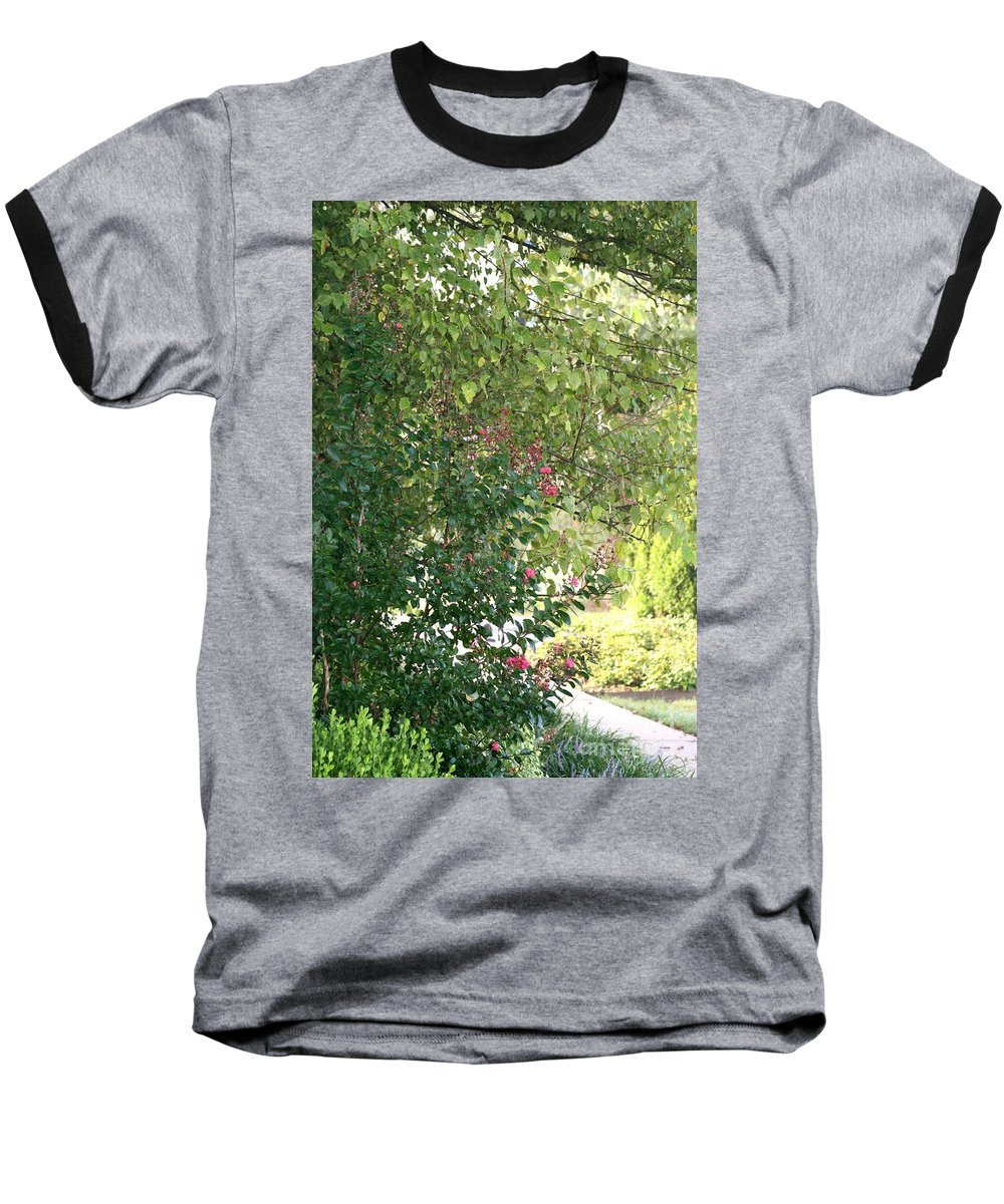 Path Baseball T-Shirt featuring the photograph Pink And Green Path by Nadine Rippelmeyer