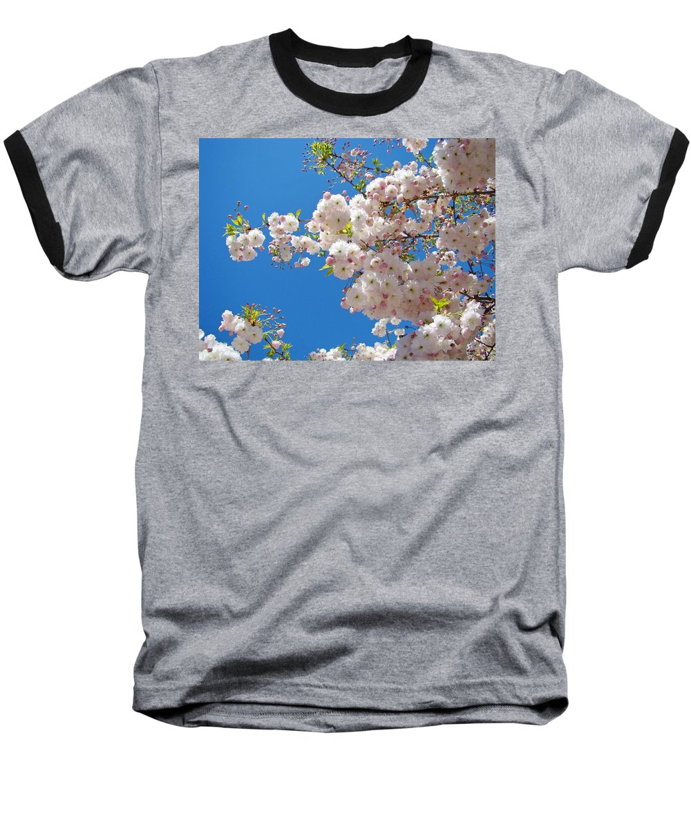 �blossoms Artwork� Baseball T-Shirt featuring the photograph Pink Tree Blossoms Art Prints 55 Spring Flowers Blue Sky Landscape by Baslee Troutman