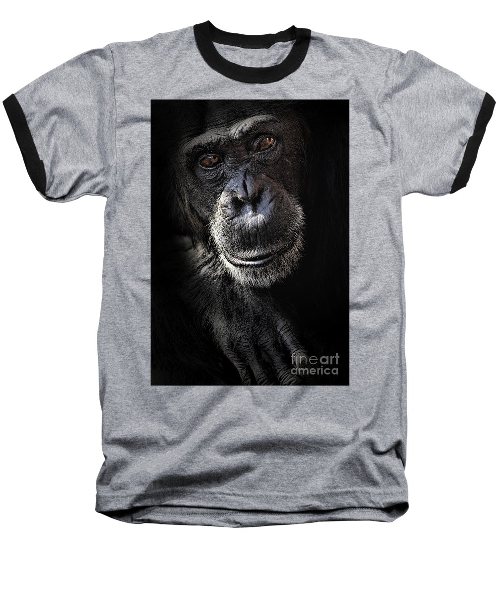 Chimp Baseball T-Shirt featuring the photograph Portrait Of A Chimpanzee by Avalon Fine Art Photography