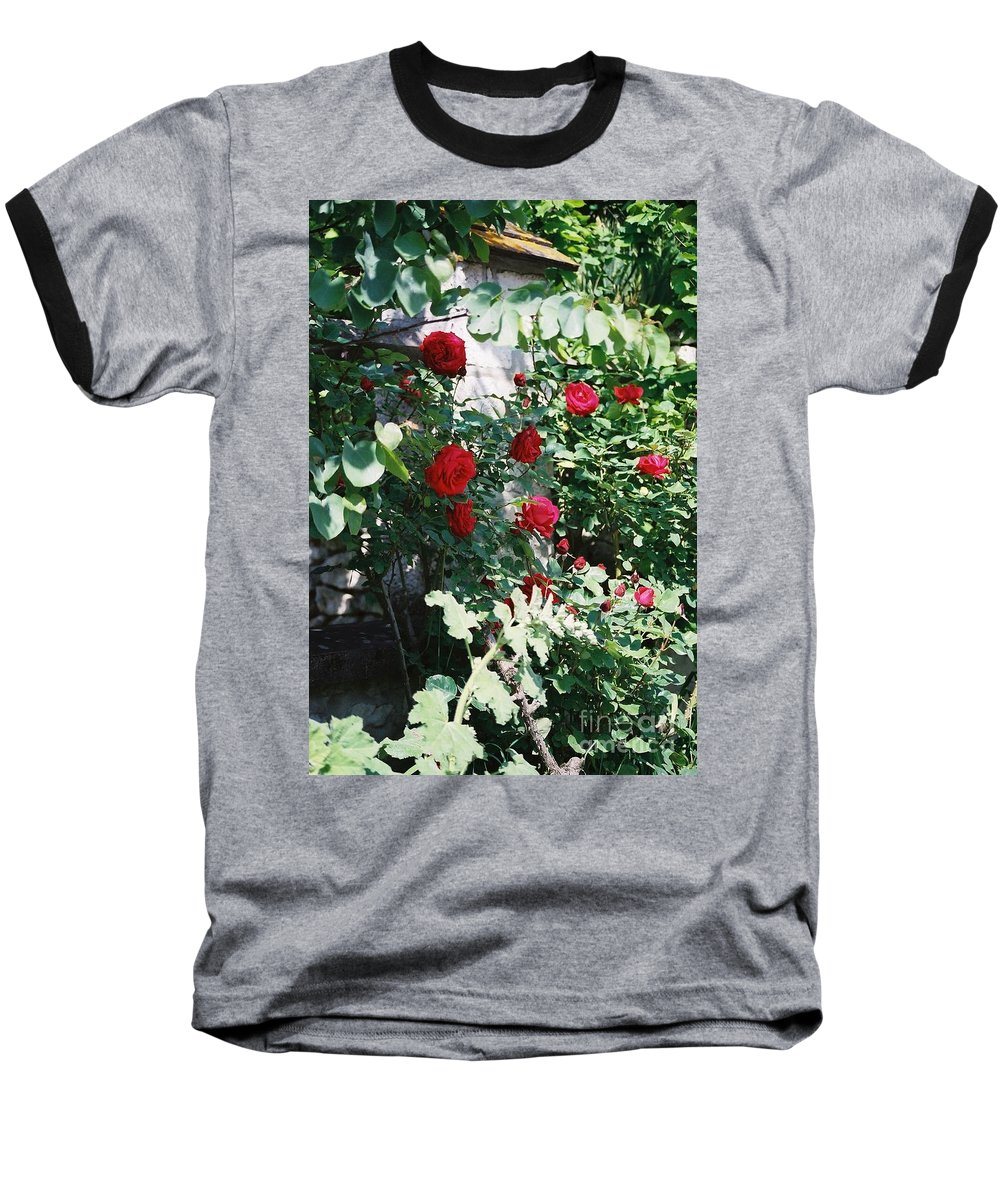 Floral Baseball T-Shirt featuring the photograph Provence Red Roses by Nadine Rippelmeyer