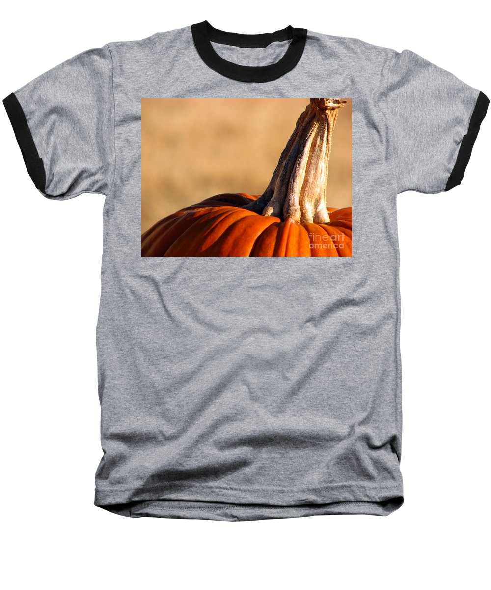 Pumpkins Baseball T-Shirt featuring the photograph Pumpkin by Amanda Barcon