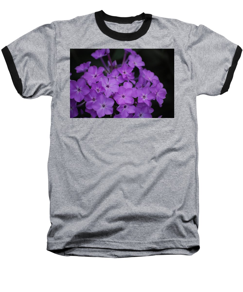 Digital Photo Baseball T-Shirt featuring the photograph Purple Blossoms by David Lane