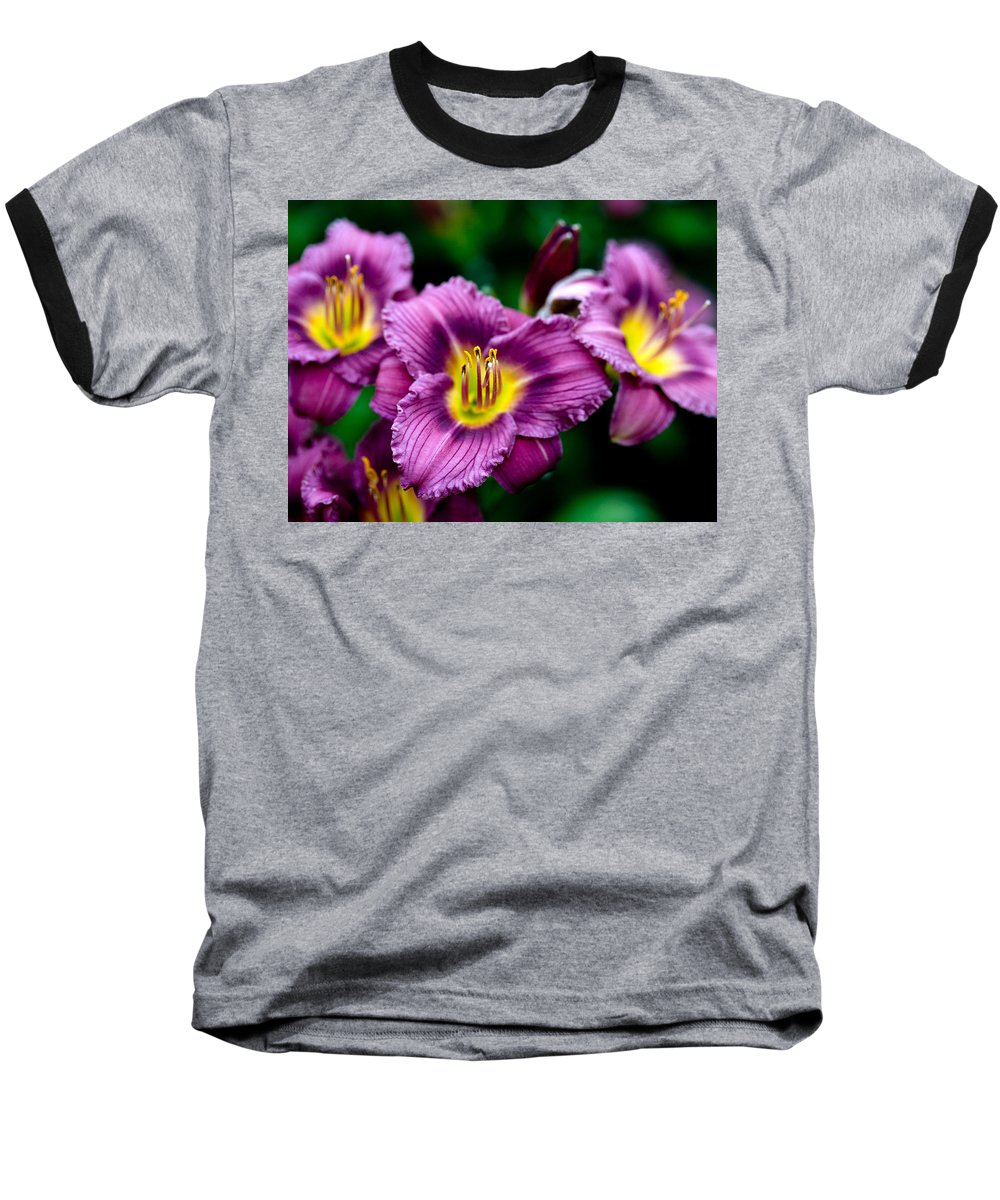 Flower Baseball T-Shirt featuring the photograph Purple Day Lillies by Marilyn Hunt