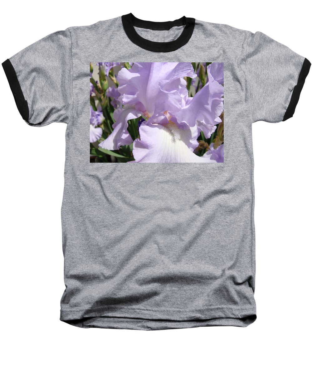 �irises Artwork� Baseball T-Shirt featuring the photograph Purple Irises Artwork Lavender Iris Flowers 13 Botanical Floral Art Baslee Troutman by Baslee Troutman