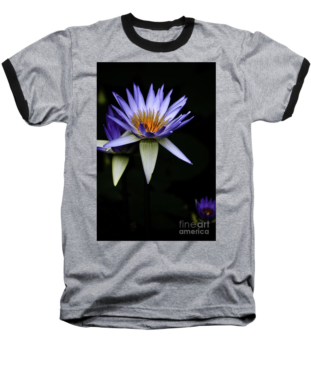 Purple Waterlily Water Lily Flower Flora Baseball T-Shirt featuring the photograph Purple Waterlily by Sheila Smart Fine Art Photography
