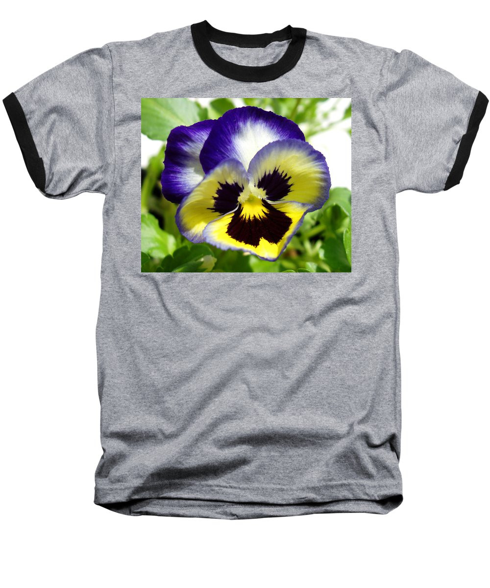 Pansy Baseball T-Shirt featuring the photograph Purple White And Yellow Pansy by Nancy Mueller