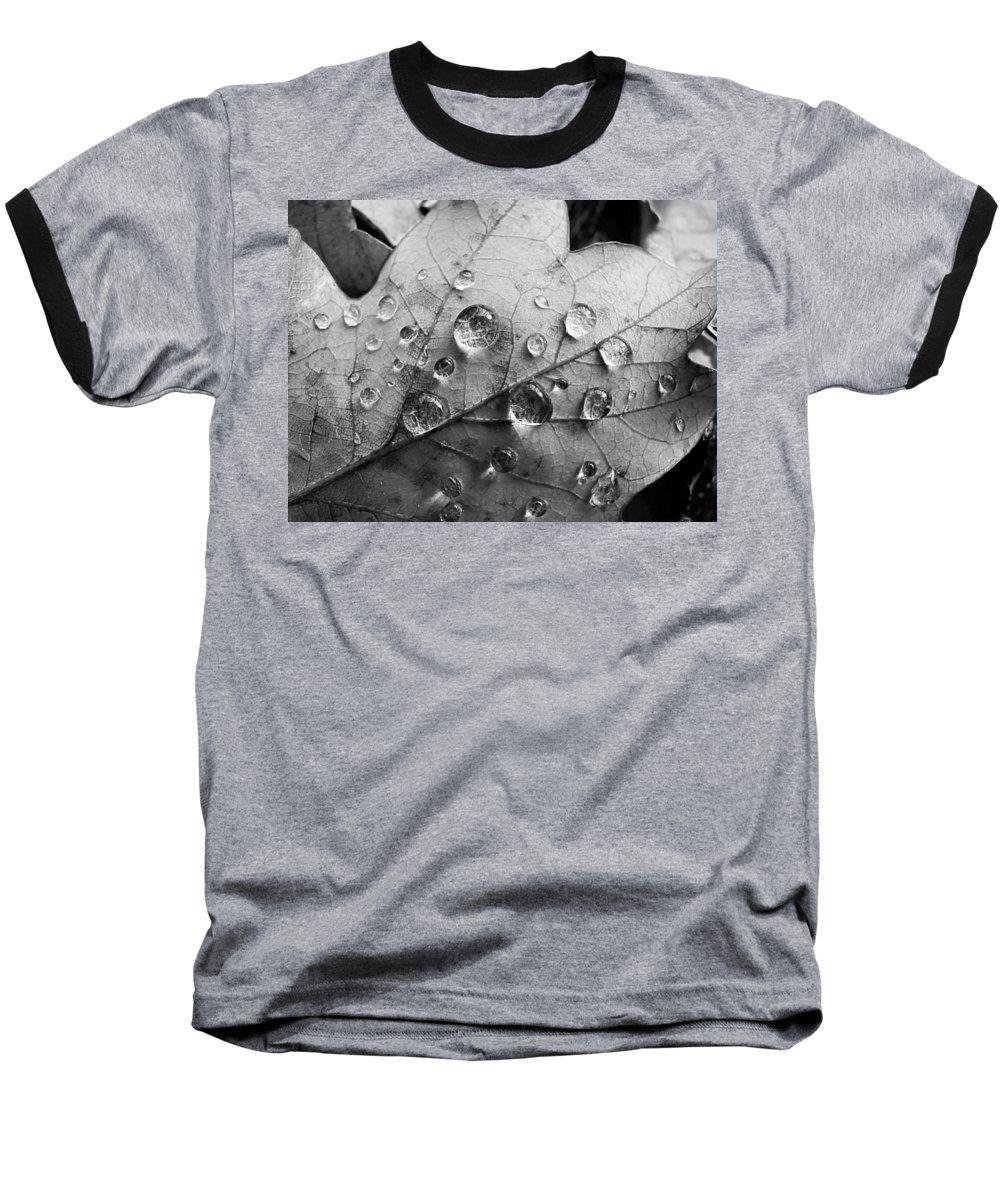 Drops Baseball T-Shirt featuring the photograph Raindrops by Daniel Csoka