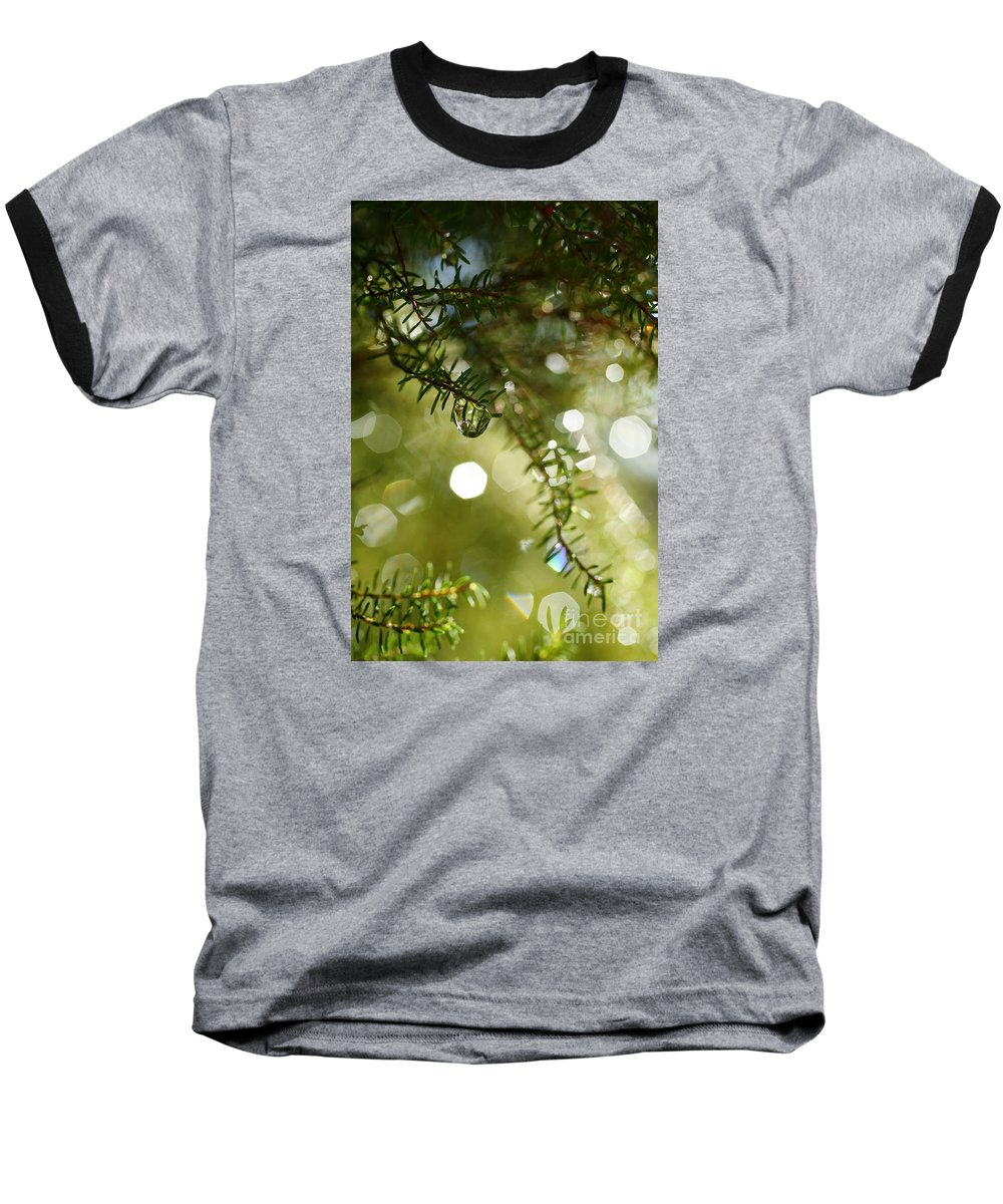 Dew Baseball T-Shirt featuring the photograph Raindrops by Gaspar Avila