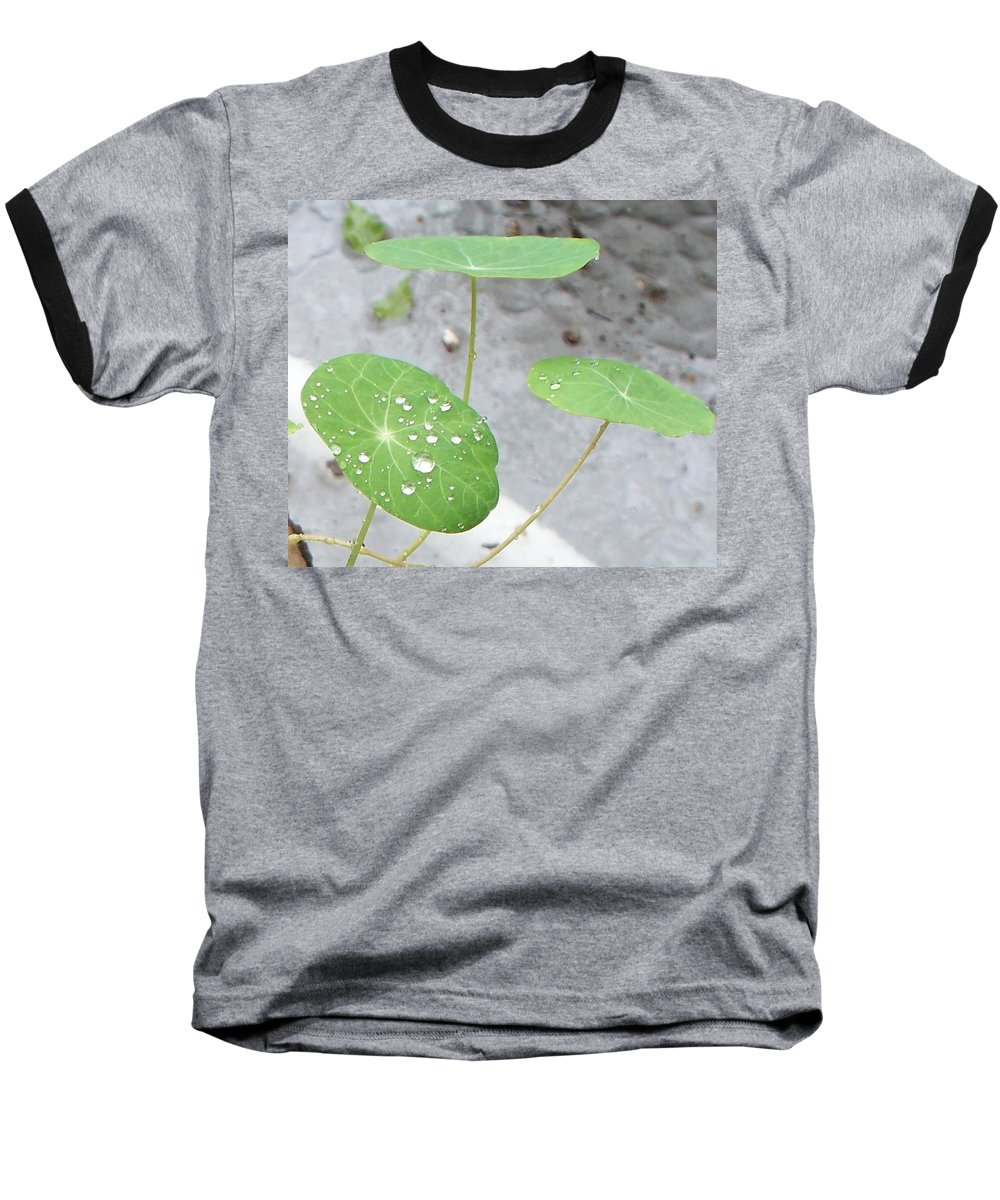 Floral Baseball T-Shirt featuring the painting Raindrops On A Nasturtium Leaf by Eric Schiabor