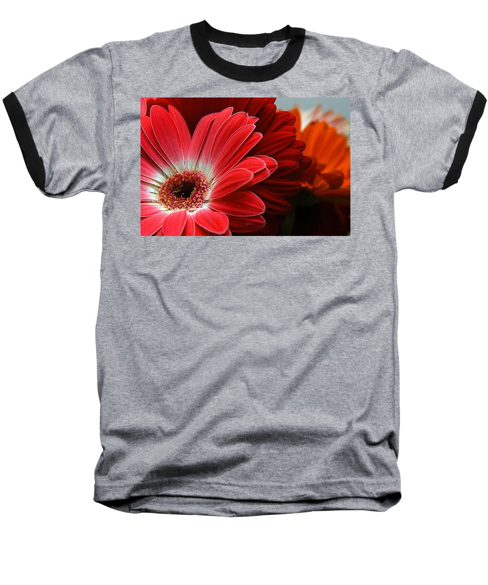 Clay Baseball T-Shirt featuring the photograph Red And Orange Florals by Clayton Bruster