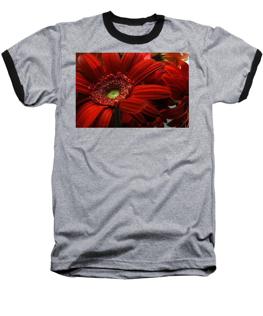 Clay Baseball T-Shirt featuring the photograph Red Floral by Clayton Bruster