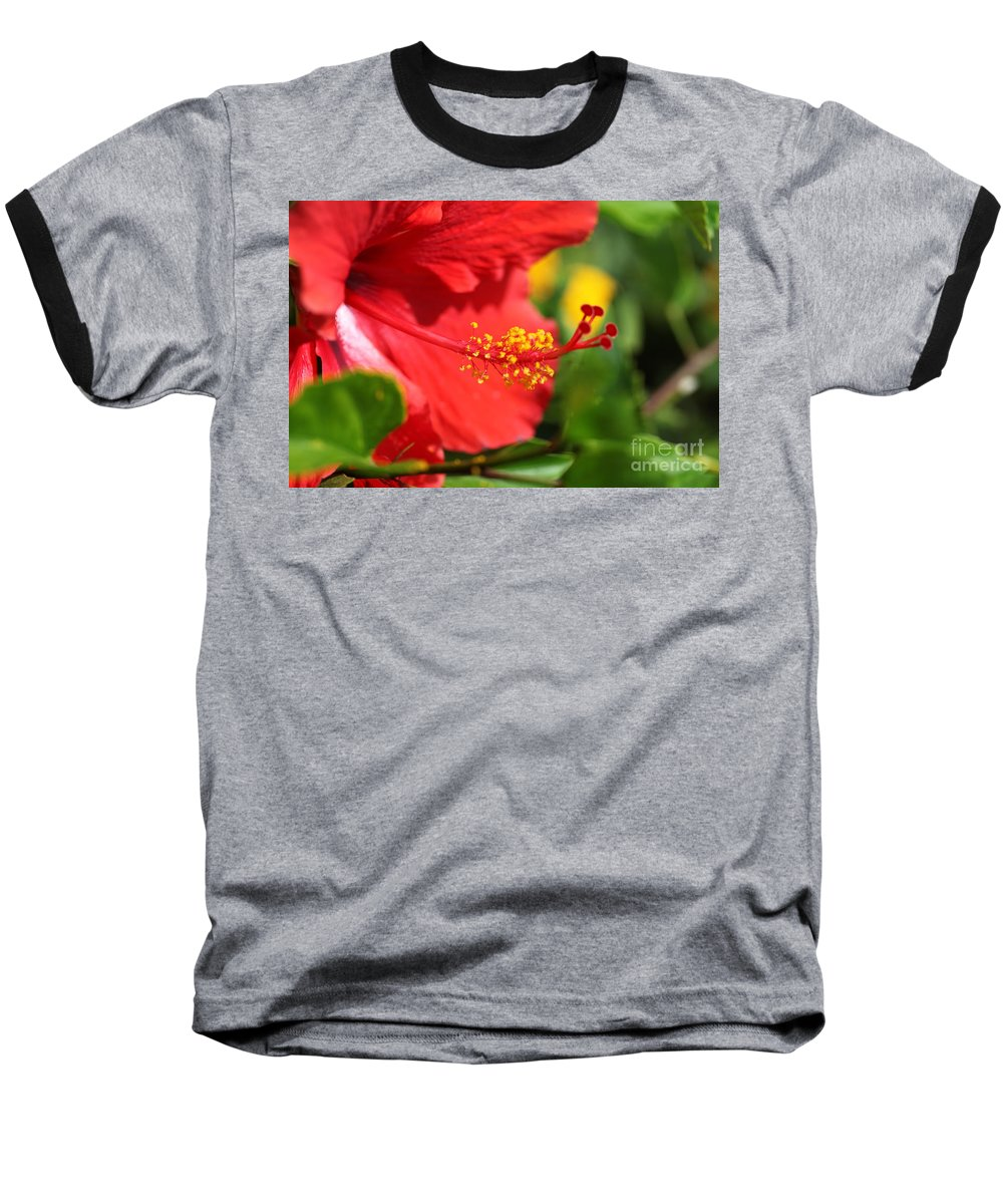 Flowers Baseball T-Shirt featuring the photograph Red Hibiscus And Green by Nadine Rippelmeyer