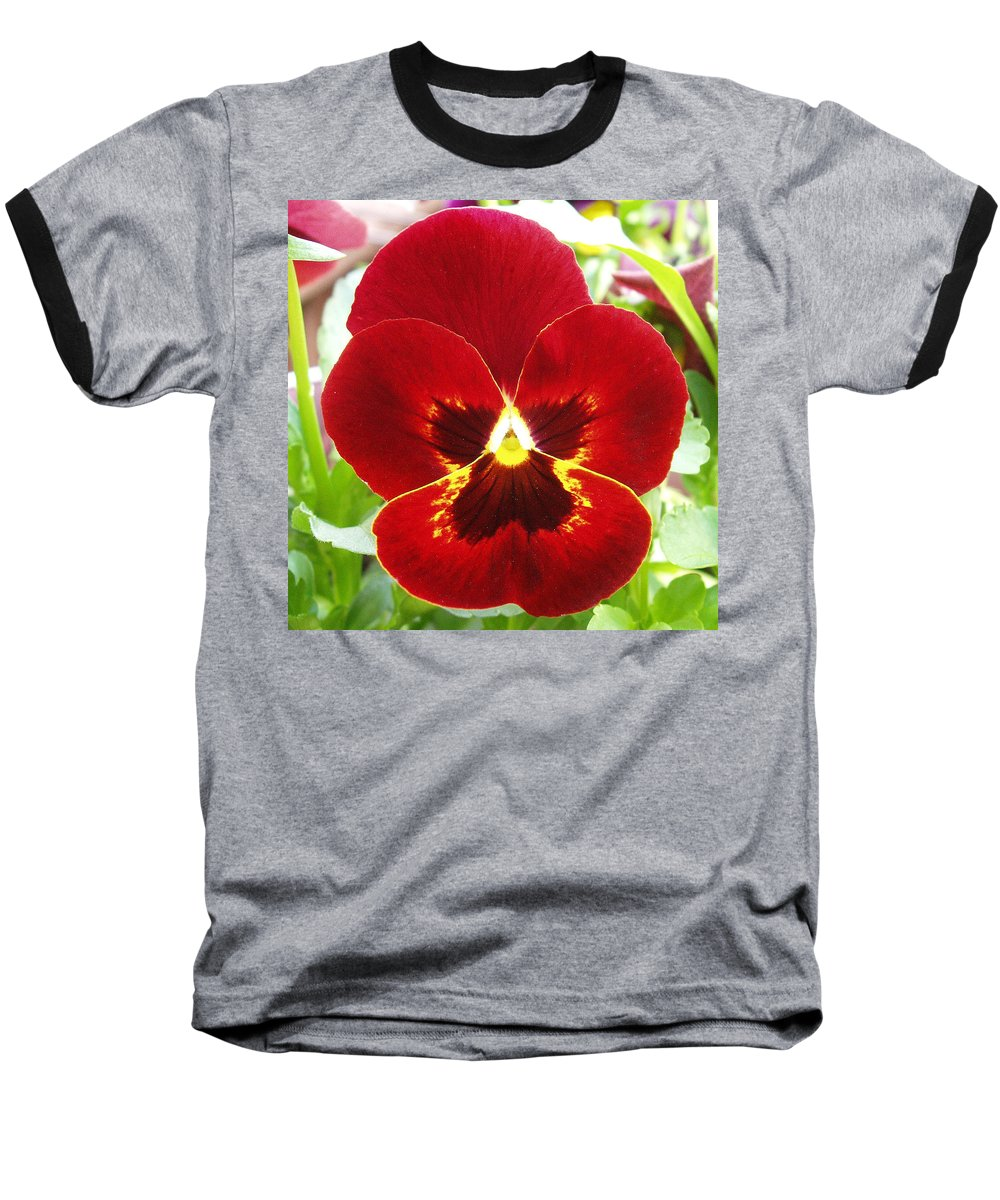 Red Baseball T-Shirt featuring the photograph Red Pansy by Nancy Mueller