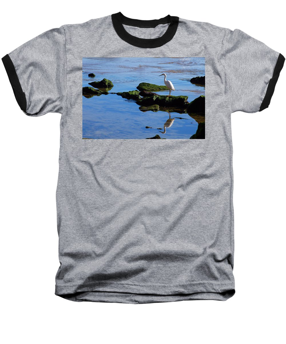 Clay Baseball T-Shirt featuring the photograph Reflecting On Dinner by Clayton Bruster