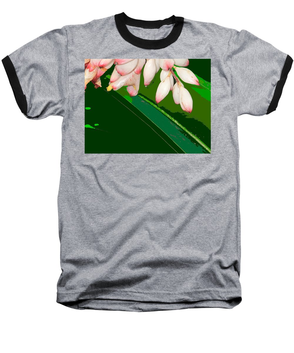 Flowers Baseball T-Shirt featuring the photograph Romney White by Ian MacDonald