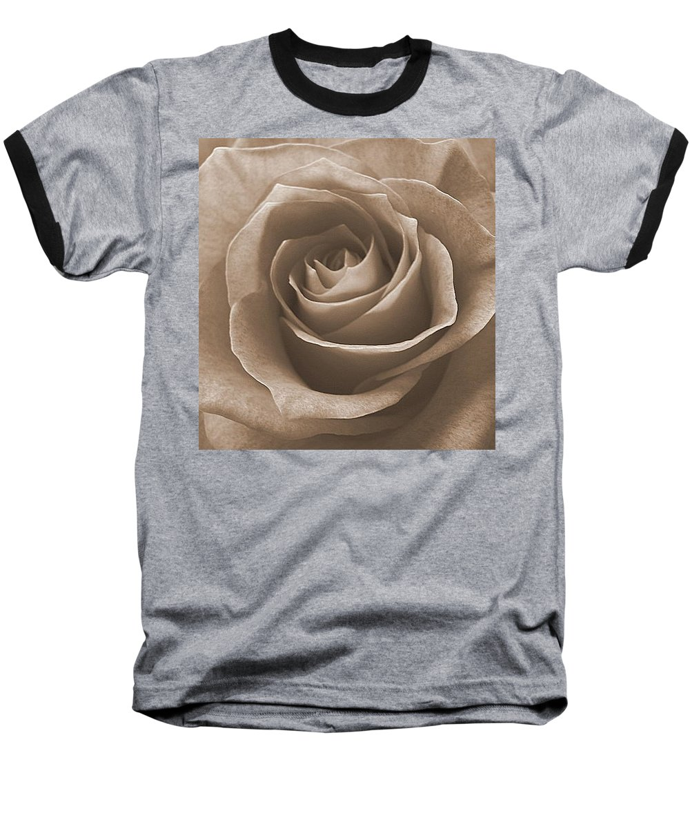 Rose Sepia Pedals Baseball T-Shirt featuring the photograph Rose In Sepia by Luciana Seymour