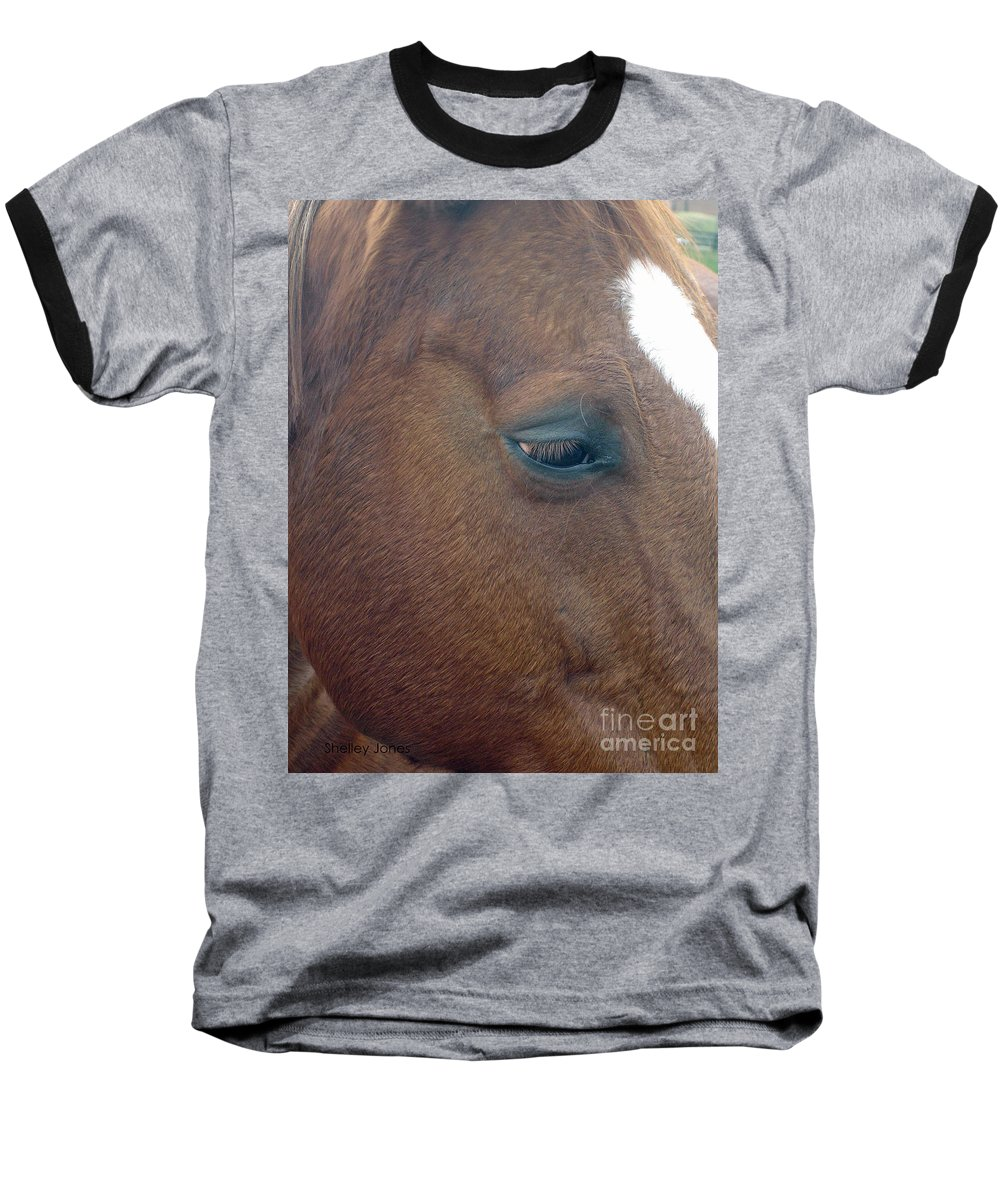 Horse Baseball T-Shirt featuring the photograph Sad Eyed by Shelley Jones